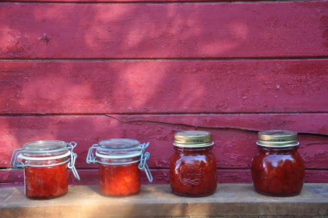 Rote Paprika Marmelade